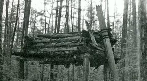 Месть мертвого шамана