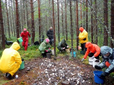 В Лапландии начались археологические раскопки на месте немецкого лагеря для военнопленных