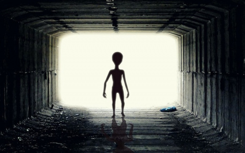Пришельцы в Сочи