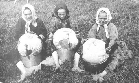 Как на Руси отличали девицу …