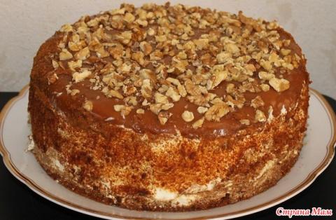 Торт Медовик со сметанным кремом и черносливом.