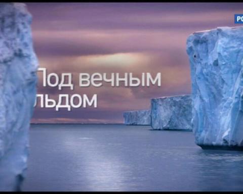 Совершенная Арктика: страна ледяного ужаса и несметных богатств