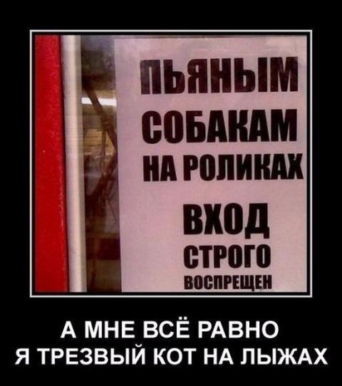 Очень веселые фото))