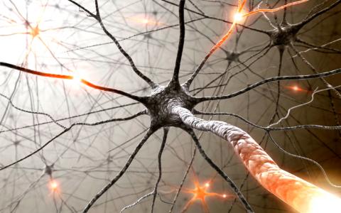 27 мая: День рассеянного склероза