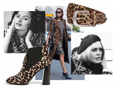 Почему леопардовый принт – больше не признак безвкусицы: как носить одежду с леопардовым принтом осенью 2016