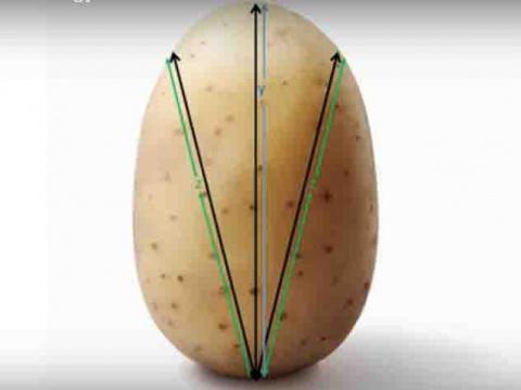 Математики вывели формулу приготовления идеальной жареной картошки