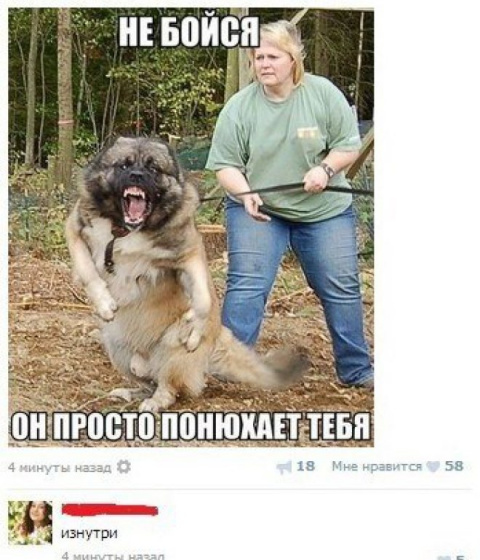 Веселые картинки)))))