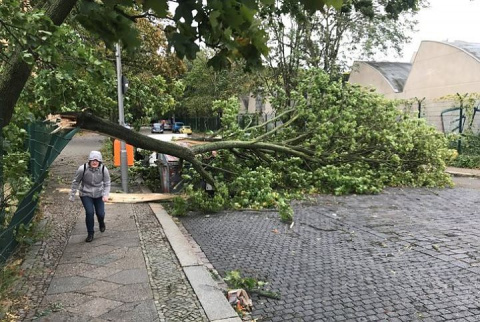 В США более 1,5 млн жилых домов обесточены штормовым ветром