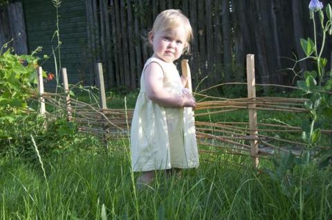 Рождение ребёнка — перемены в саду