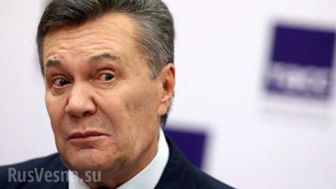 КамАЗы наличных: почему Украине не удаётся вернуть деньги, «похищенные» экс-президентом Януковичем