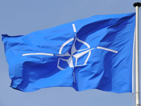 Аналитик: Черногория нужна НАТО лишь как пушечное мясо