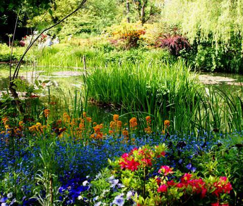 Сады Клода Моне