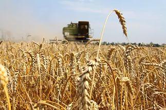 Российские фермеры : Спасибо…