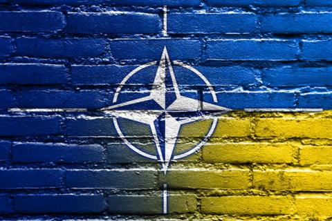 Украина: представители НАТО зачастили в Киев. AgoraVox, Франция