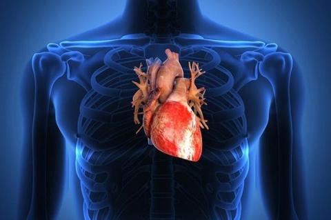 11 симптомов, указывающих на проблемы с сердцем