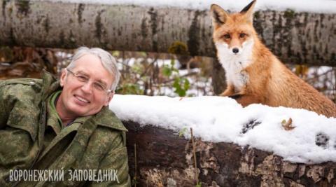 Зорко одно лишь сердце: в Воронежском заповеднике ученый подружился с лисой