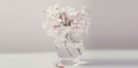 Цветы и растения, которые по…