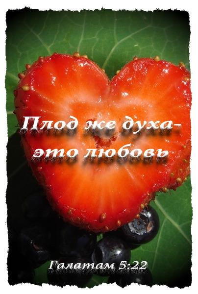 плод духа