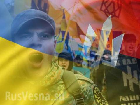 Украина: имитационная демократия и гибридный нацизм