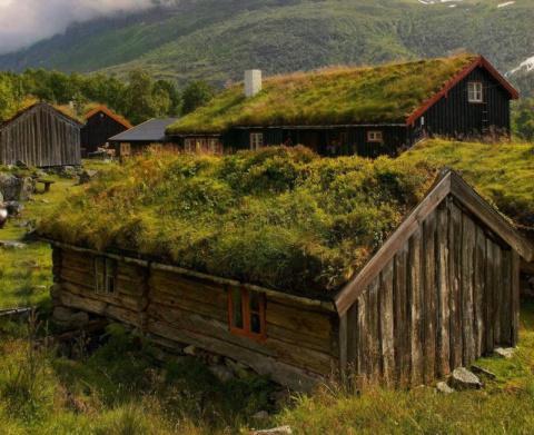 Скандинавские домики с зарос…