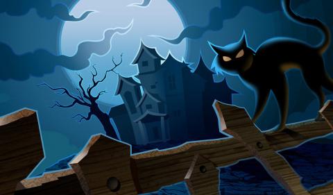 Черная кошка.Мистика и реальность