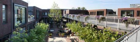 Хогвей: деревня для людей с деменцией в Голландии