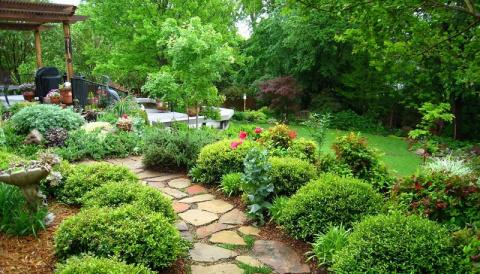 Идеи сада для ленивых. Можно не ухаживать — растет само, и как пышно!