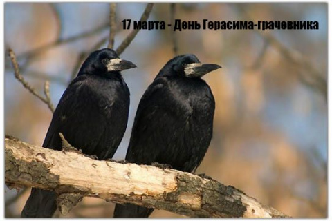 http://mtdata.ru/u11/photo0F79/20196943080-0/big.jpeg