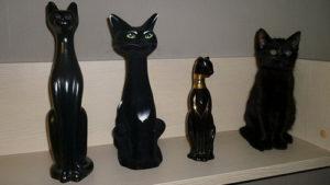 Коты — мастера камуфляжа