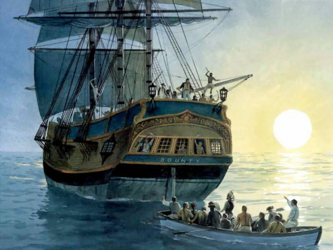 Бунт на корабле: самый удиви…