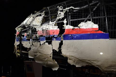 Боинг MH-17 могла сбить толь…