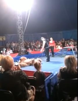 Медведь напал на украинцев в…