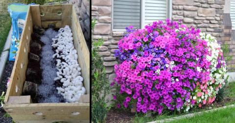 Замечательная идея для дачи, которая порадует цветоводов