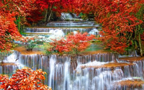Невероятно красивая осень!