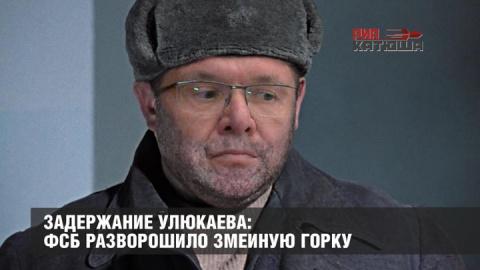 Задержание Улюкаева: ФСБ разворошило змеиную горку