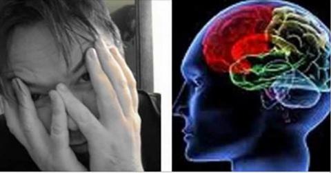 Ученые говорят, что наш мозг…
