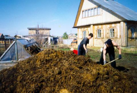 Сельское хозяйство решили ут…