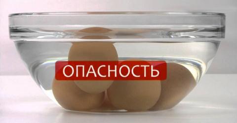 Это необходимо знать всем хозяйкам: как проверить яйца на свежесть