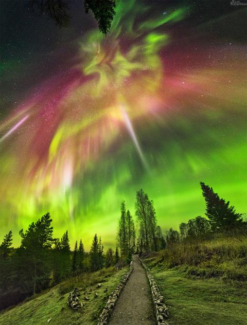 Великолепные и сказочные моменты: буйство красок художницы природы!