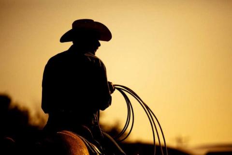 Куда ковбою без его лошади?!