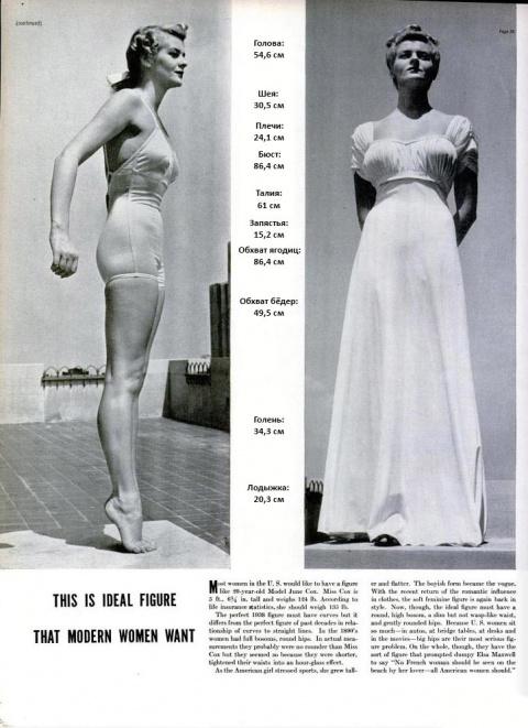 Вот как выглядела идеальная женская фигура в 1930-ых годах