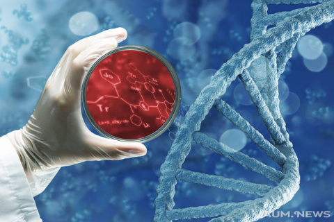 Интересные факты из мира ген…