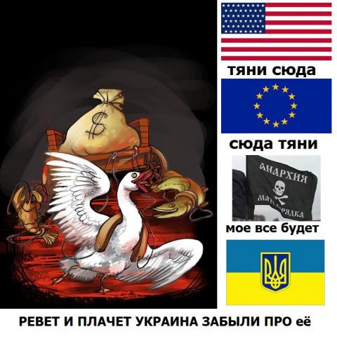 Это безумная,безумная Украина , 25 революция, опять штурм Рады.