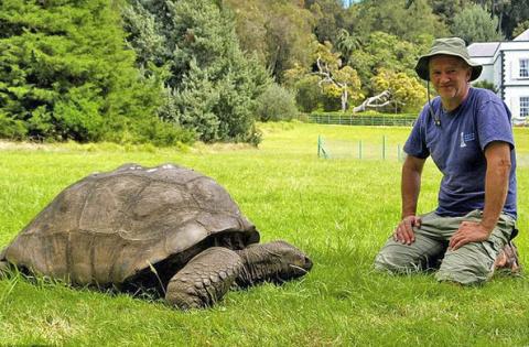 Старейшая в мире черепаха сл…