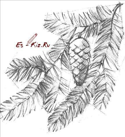 эскизы листьев: