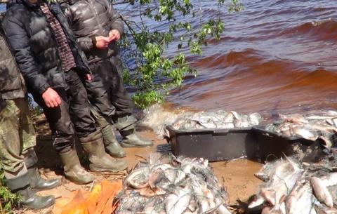 Рыбинский браконьер за дачу взятки полицейскому заплатит штраф – 600 тыс.руб.