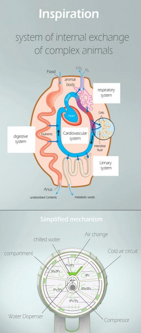 А вместо сердца - система охлаждения