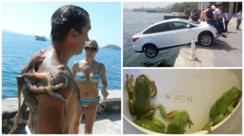 Отпуск из Ада: фотографии из турпоездок, в которых что-то пошло не так