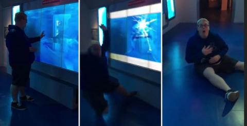 Акула «разбившая» аквариум ч…