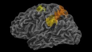 Исследователи обнаружили «фи…